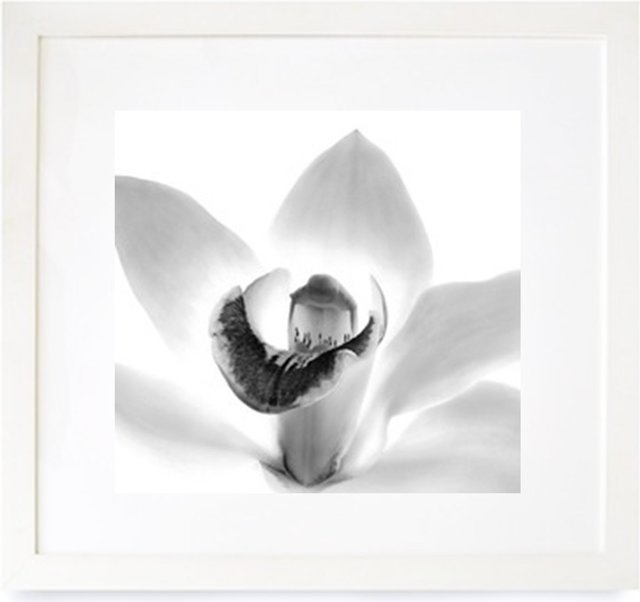 , 'Orchid,' 2000, The Art Design Project