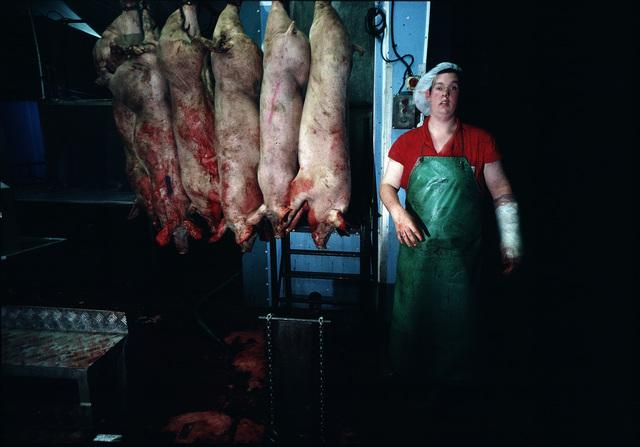 , 'Abbatoir, Flitwick (b),' circa. 1990, PM/AM