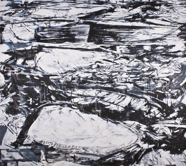 Olea Nova, 'Identifying Choices', 2014, Mana Contemporary