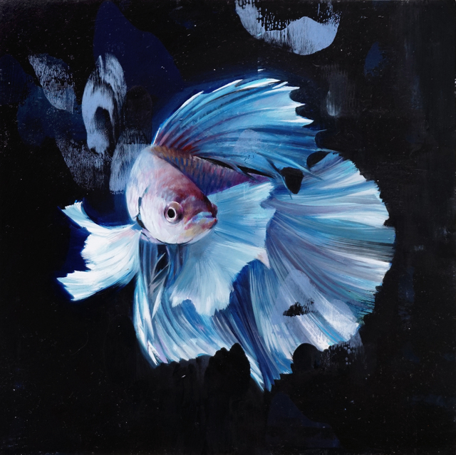 , 'Blue Betta,' 2017, Abend Gallery