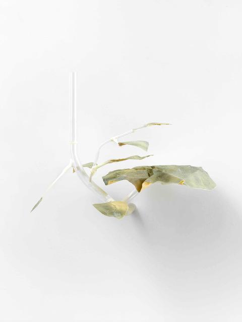 , 'Lappen mit Peilung,' 2017, Cindy Rucker Gallery