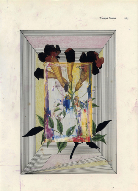 , 'Trumpet Flower,' 2016, Eric Buterbaugh Gallery