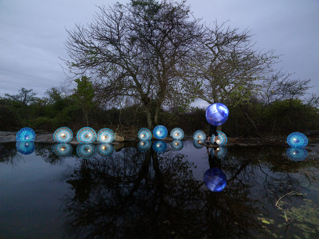 , 'Bicho da Seda III,' 2012, SIM Galeria