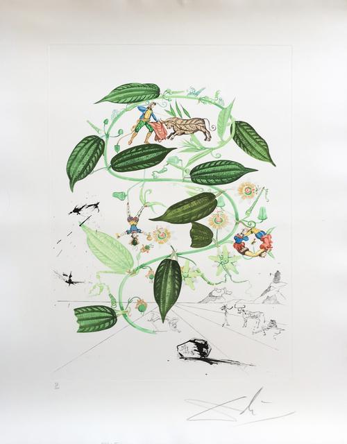 , 'Flora Dalinae Passionflower,' 1968, Fairhead Fine Art Limited