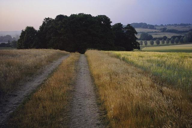 , 'Stoke by Nayland, Suffolk,' 2013, Osborne Samuel