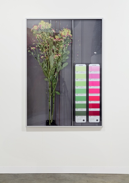 , 'Untitled (Scan Pantone 41 M, 21 M),' 2012, Galerie Mehdi Chouakri