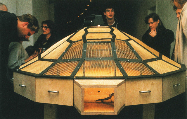 Huang Yong Ping 黄永砯, 'Theater of the World', 1993, Mixed Media, Wood and metal structure with warming lamps, electric cable, insects (spiders, scorpions, crickets, cockroaches, black beetles, stick insects, centipedes), lizards, toads, and snakes, Guggenheim Museum