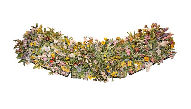 , 'FAMILIAR WILD FLOWERS,volumes 1-3,' 2017, Heller Gallery