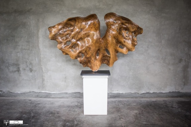 , 'Butterfly,' 2019, HAD Gallery