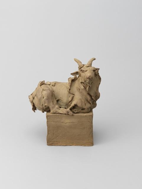 Stephanie Quayle, 'Goat', Gallery 38