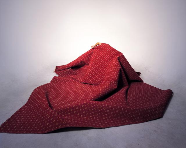 , 'Revolution's Romanticism,' 2007, ShanghART