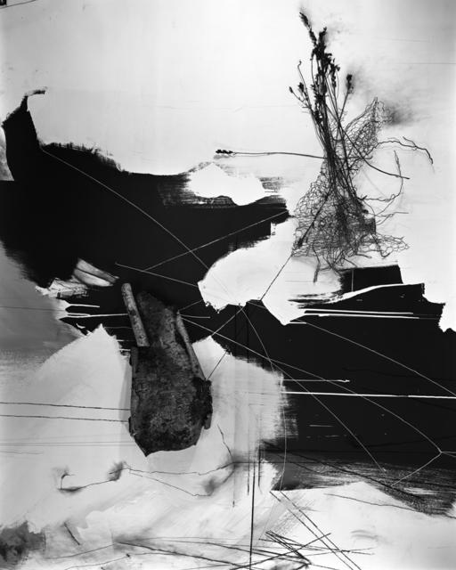 , 'September Birch,' 2014, Benrubi Gallery