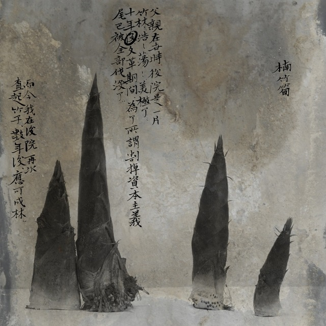 , 'Bamboo Shoots,' 2012, see+ Gallery