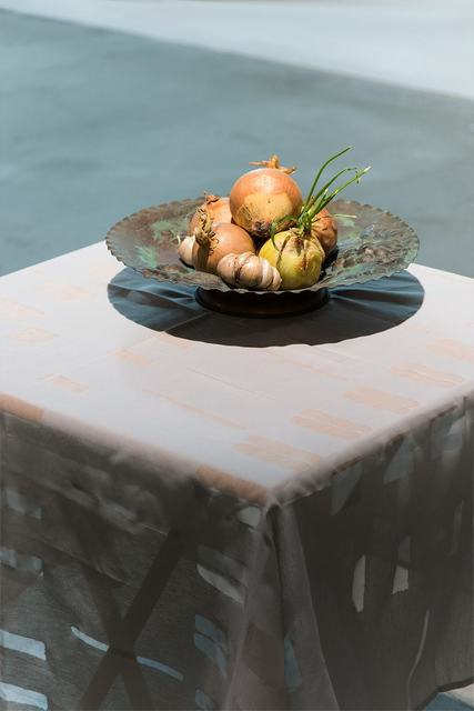 , 'growing onion,' 2015, Blindspot Gallery