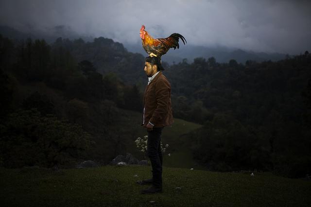, 'Iluikak: El gallo,' 2018, Almanaque