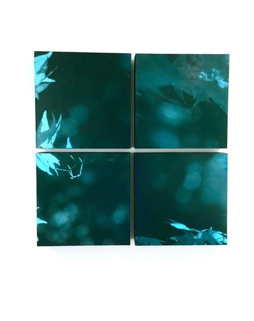 , 'Nocturnal Rhythms,' 2017, Elisa Contemporary