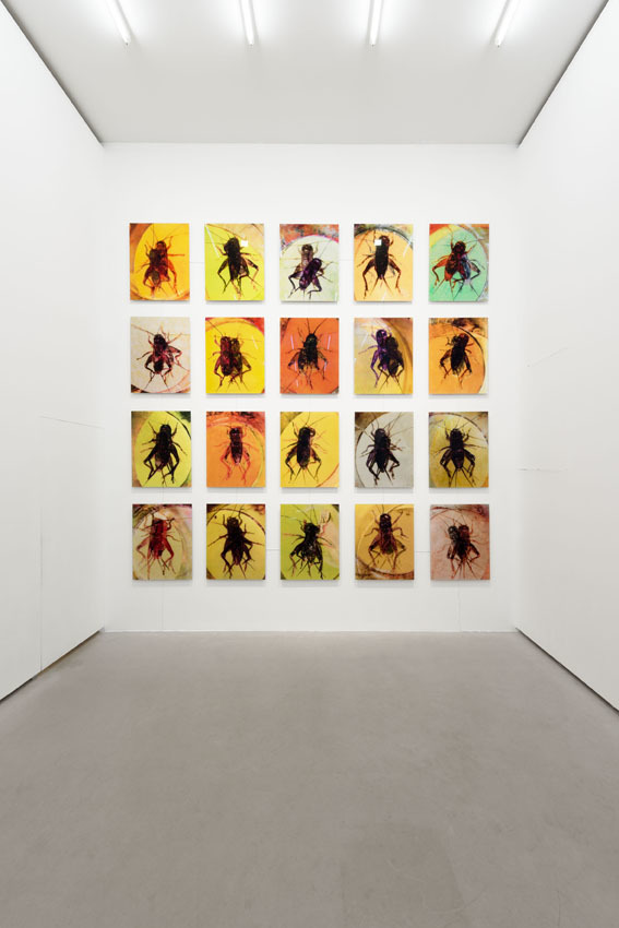 Glückliche Zeiten (Happy Times), Installation view, Galerie EIGEN + ART Berlin, Photo: Uwe Walter