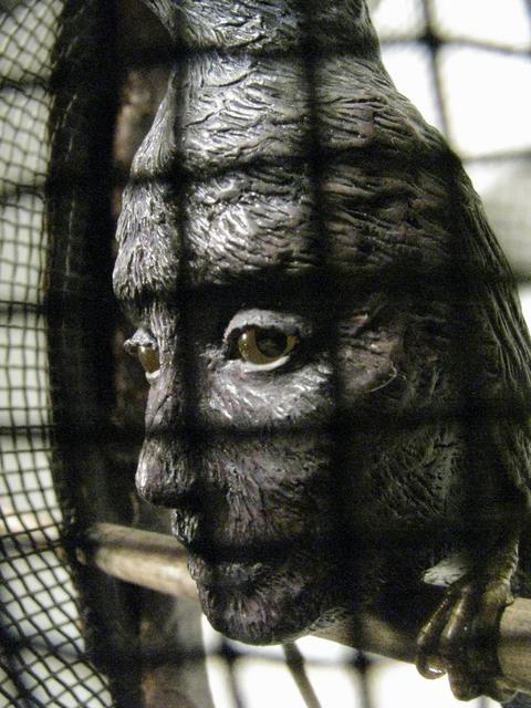, 'Behind Your Eyes,' 2014, Koplin Del Rio