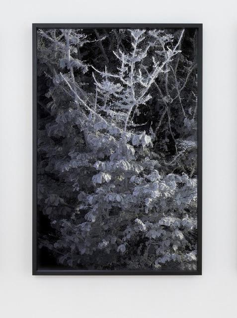Quayola, '#L2_007_022', 2018, Marignana Arte