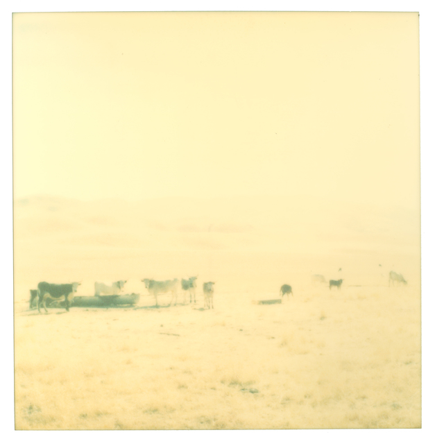 Stefanie Schneider, 'Untitled - Contemporary, 21st Century, Polaroid, Landscape Photography', 2004, Photography, Analog C-Print (Vintage Print), hand-printed by the artist, based on an expired Polaroid, not mounted, Instantdreams