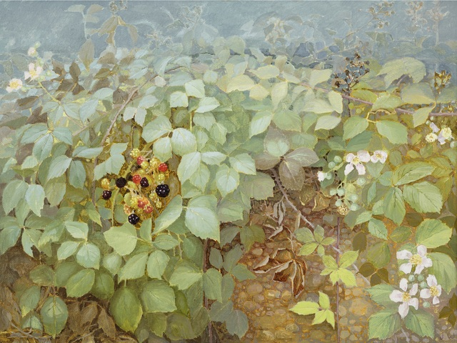 , 'Blackberry Hedge III,' , Jonathan Cooper
