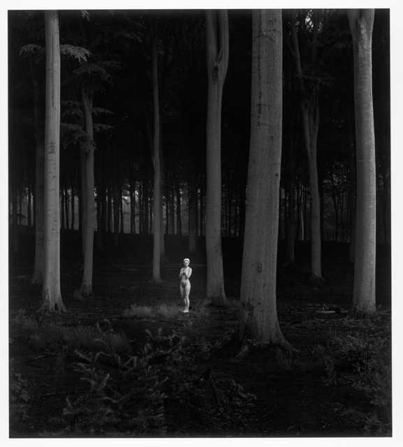 , 'Blanka, Dieren 1981,' 1981, Gallery Katarzyna Napiorkowska | Warsaw & Brussels