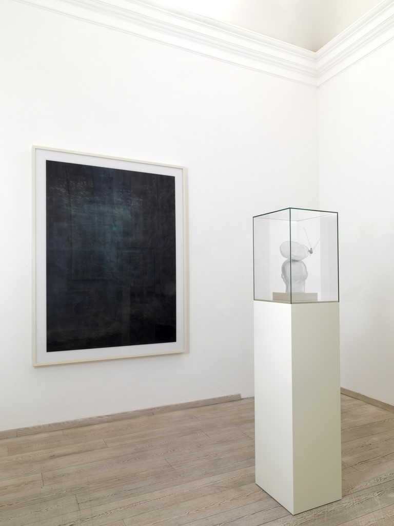 Installation view at the OTTO Gallery from Urs Luethi solo show Nothing to hide, 2010