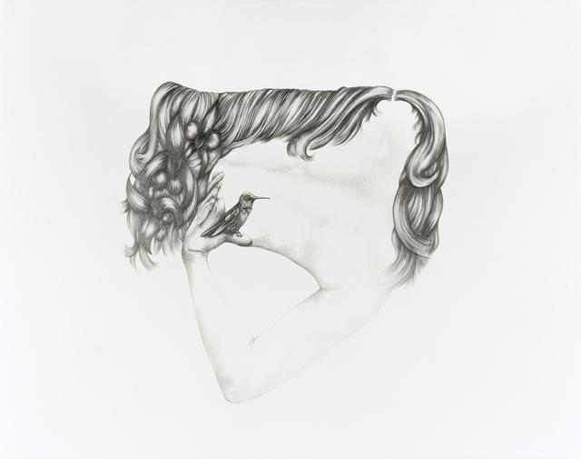 , 'Cataracts and perch,' 2014, Hosfelt Gallery