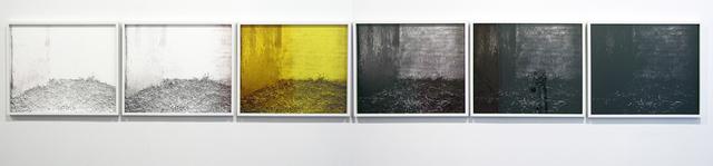 , 'Deer Chamber,' 2013, LMAKgallery