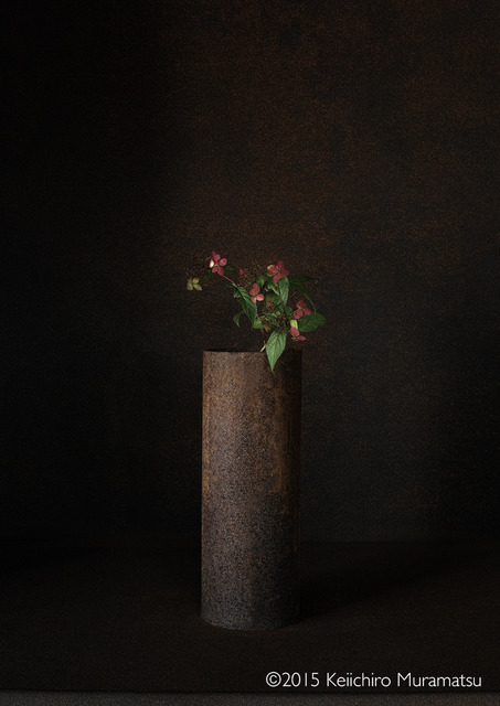 , 'A Stage Hydrangea 6-1,' 2015, Galerie Marie-Robin