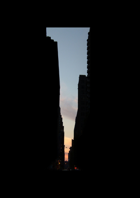 , 'New York Sky #28,' 2004, Flowers