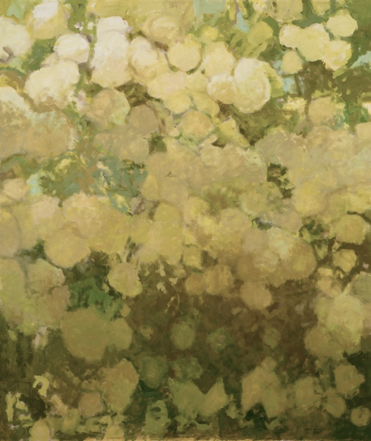 , 'Viburnum in the Afternoon,' 2018, Les Yeux du Monde Gallery