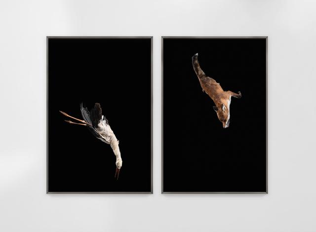, 'Tiere sind Engel mit Fell Delta,' 2018, Sies + Höke