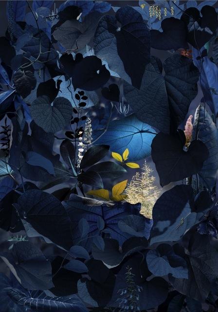 Ruud Van Empel, 'Floresta Negra #5', 2018, Huxley-Parlour