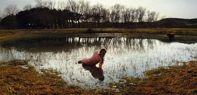 , 'Overveen - vogelmeer,' 2013, Galerie Les filles du calvaire