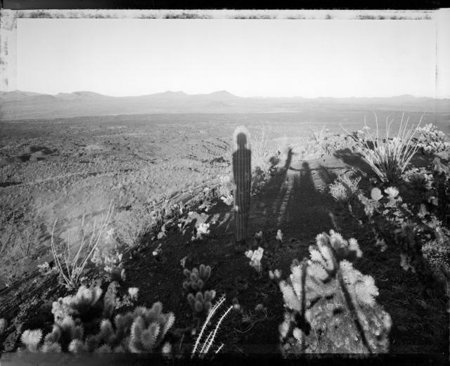 Mark Klett, 'Self Portrait With Saguaro ', photo-eye Gallery
