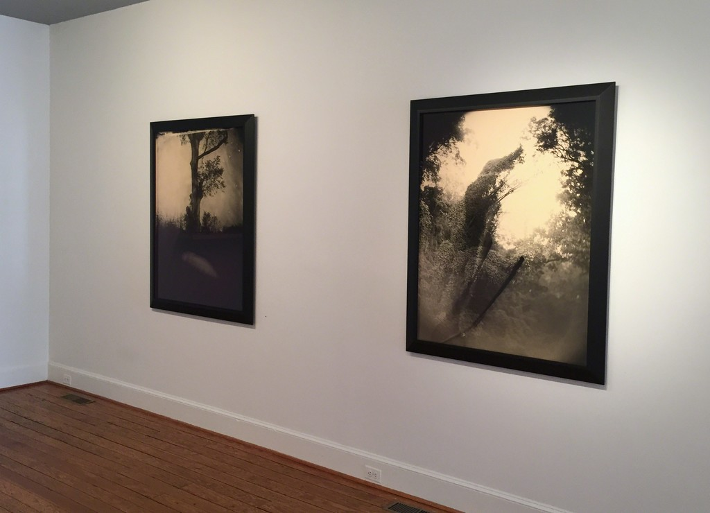 From right to left: Untitled (#3 Kudzu Tree with Two), 1998; Untitled (#5 Stone Grave), 1998.