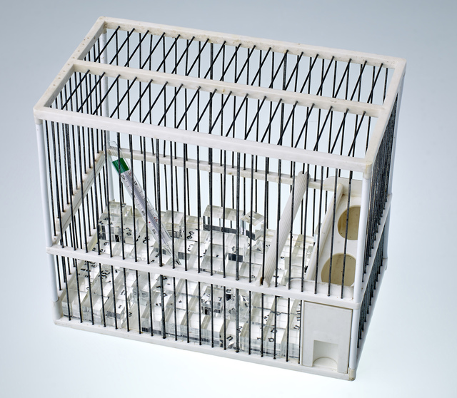 ", '""Cage à Sucre"" (hommage Duchamp),' 1976, Galeria Freijo"