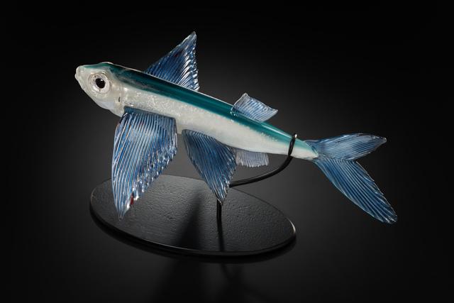 , 'Flight (Flying Fish),' 2017, Stonington Gallery