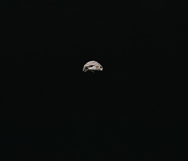, 'Legionär,' 2017, REITER