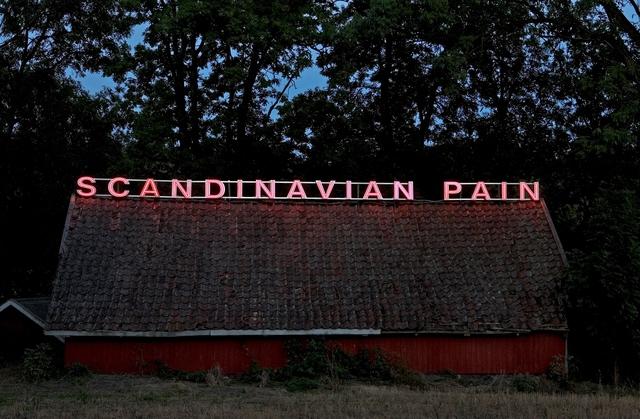 , 'Scandinavian Pain (twilight),' 2006, Hirshhorn Museum and Sculpture Garden