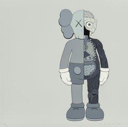 Companion (Grey)