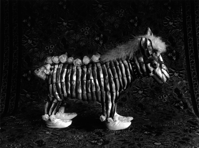 , 'Zebra and Japanese Socks,' 2010, Michel Soskine Inc.