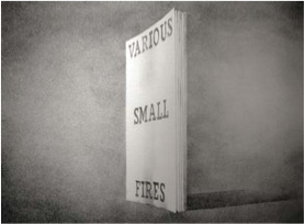 Ed Ruscha, 'Various Small Fires (from the Book Covers series)', 1970, David Benrimon Fine Art