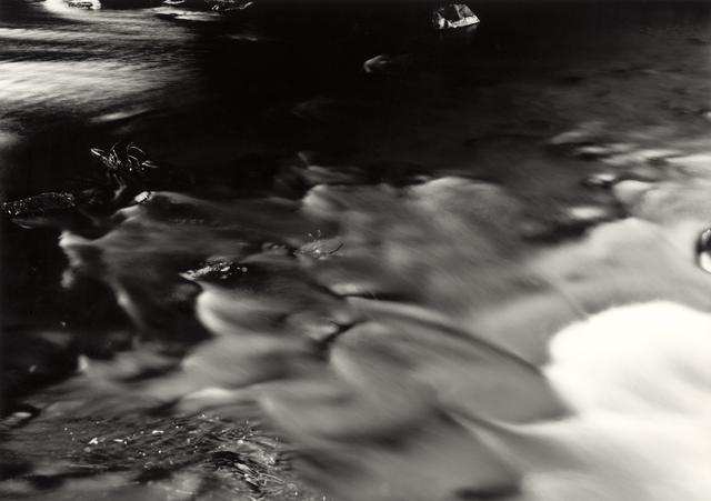 , 'Late Afternoon -The River Tweed, Dawyck, Stobo, Peebleshire, Scotland,' 2014, Ingleby Gallery