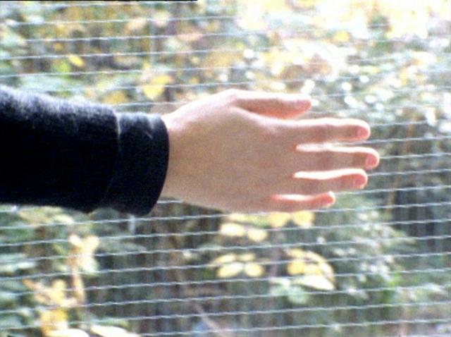 , 'Hand Wall,' 2007, Klemm's