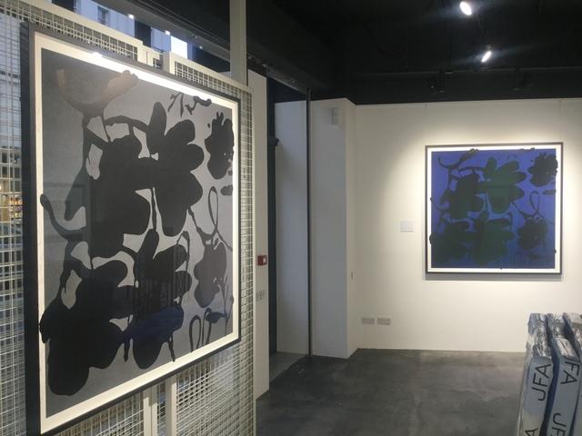 Donald Sultan, 'Lantern Flowers, Black and Grey FRAMED', 2017, Joseph Fine Art LONDON