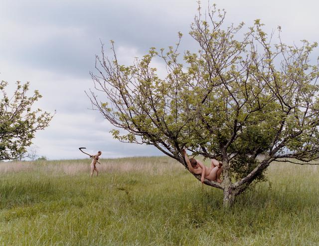 Justine Kurland, 'Peach Tree', 2002, Mitchell-Innes & Nash