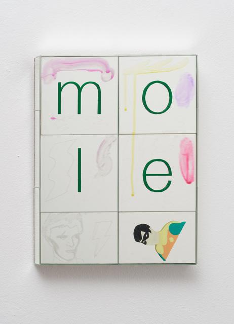 , 'mole,' 2018, Galerie Judith Andreae