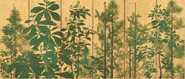 """Tawaraya Sōtatsu, 'Trees. Sotatsu School, """"Inen"""" seal. ', mid-17th century, Drawing, Collage or other Work on Paper, Ink, color and gold on paper, Smithsonian Freer and Sackler Galleries"""